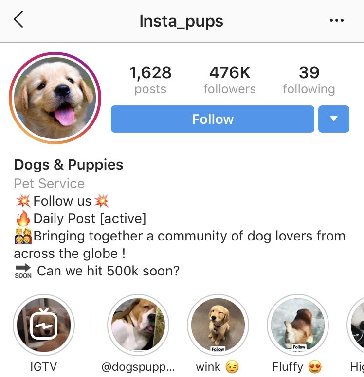 bitmoji instagram bio