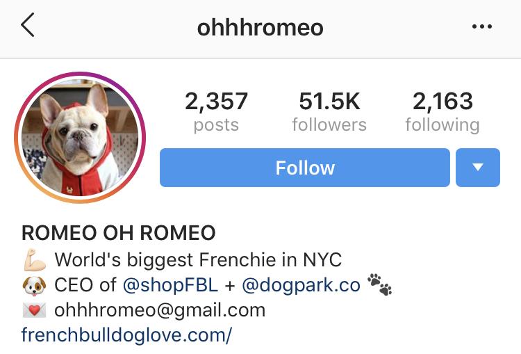tag someone in instagram bio