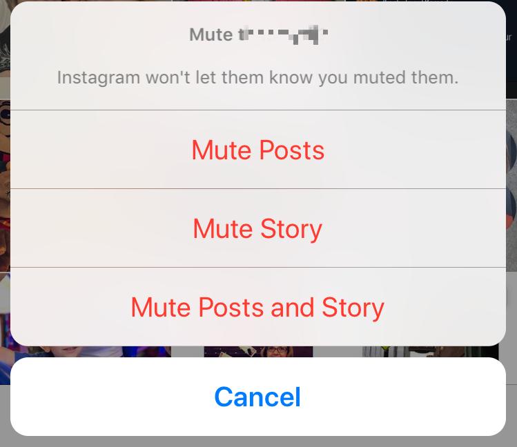 mute instagram followers